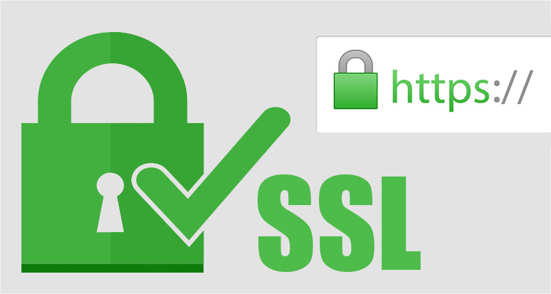 Certificado SSL (HTTPS)